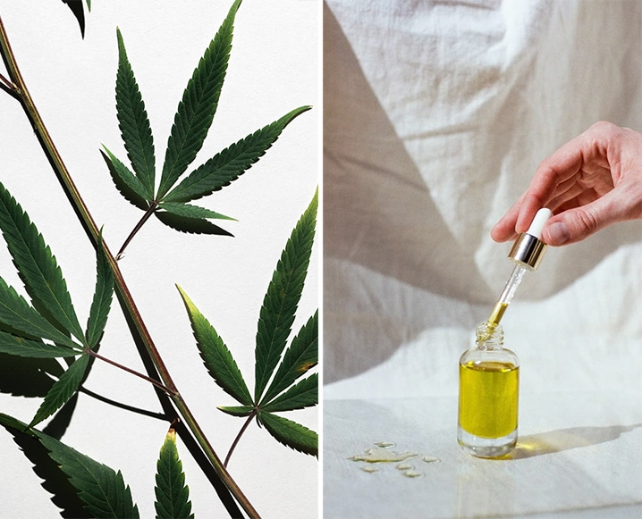 A Better Way To Buy Quality CBD Products Online